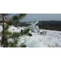 Костюм маскировочный зимний Stich Profi №1 - Multicam Alpine, Рост: 170-176, Размер: 50-52